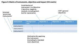 Figure 9: Matrix of instruments, objectives and impact (IOI-matrix)