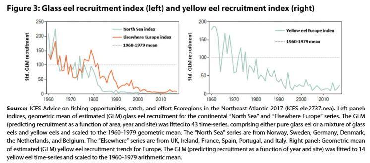 Figure 3: Glass eel recruitment index (left) and yellow eel recruitment index (right)