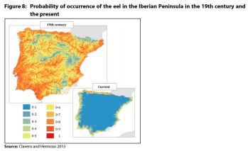Figure 8: Probability of occurrence of the eel in the Iberian Peninsula in the 19th century and the present