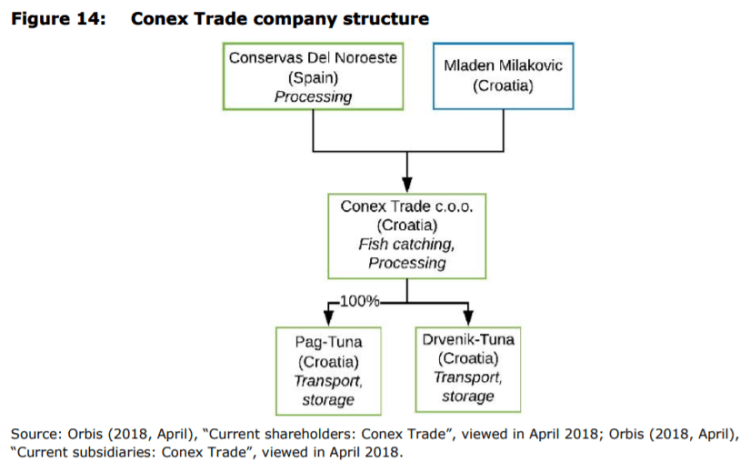Figure 14: Conex Trade company structure