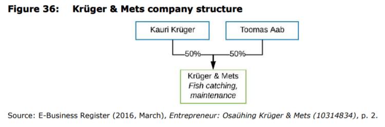 Figure 36: Krüger & Mets company structure