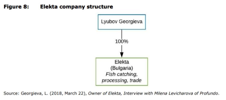 Figure 8: Elekta company structure