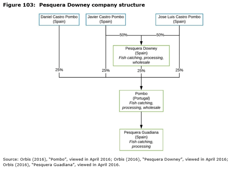 Figure 103: Pesquera Downey company structure