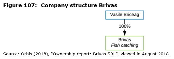 Figure 107: Company structure Brivas