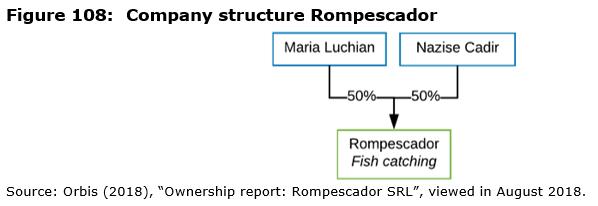 Figure 108: Company structure Rompescador