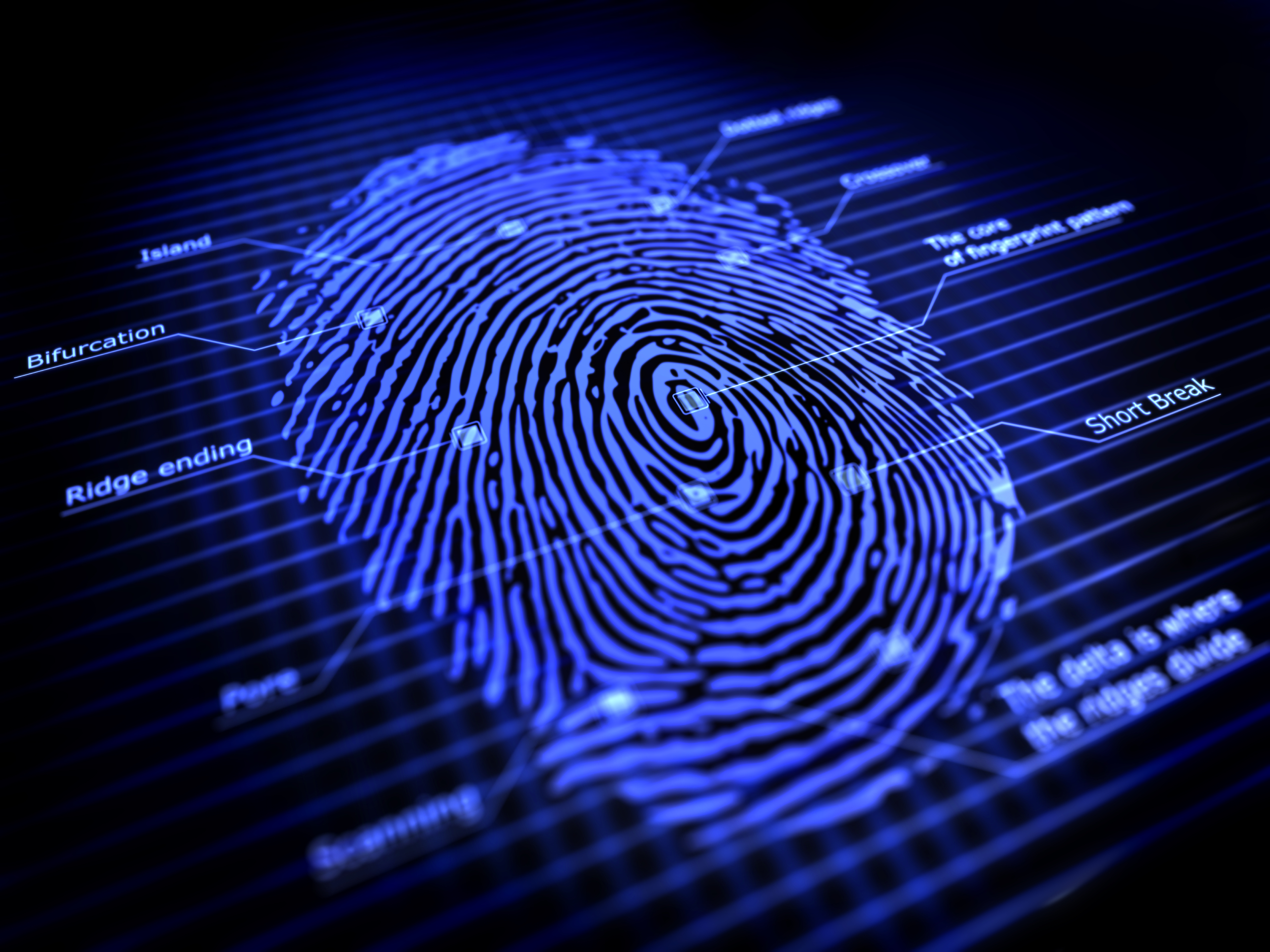 Unintentional Bias In Forensic Investigation