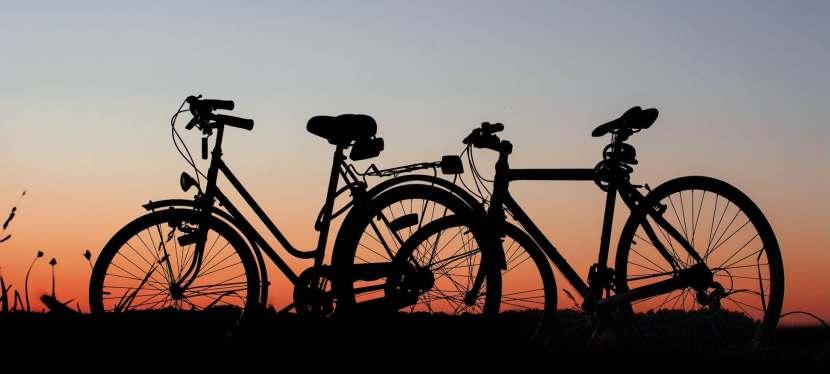 Vancouverites Back Temporary Bike Lane in Stanley Park