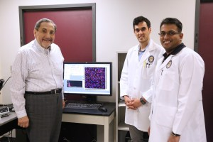 Confocal Microscopy to identify regulation of neuronal cell survival at cell level: with postdoctoral fellows Surjyadipta Bhattacharjee, PhD; Aram Asatryan, MD, PhD