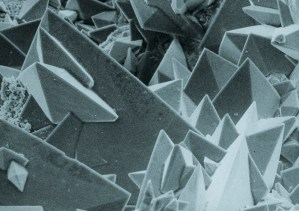 Surface_of_a_kidney_stone_with_tetragonal_crystals_of_Weddellite_(calcium_oxalate_dihydrate)._REM_21