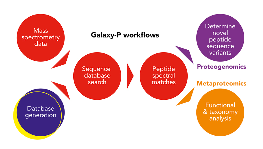 Galaxy-P workflows