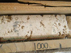 Bahamian rock sample analysed for iodine.