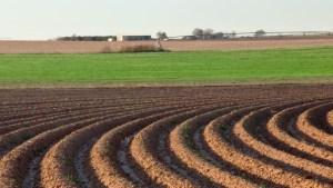 sustainable soil