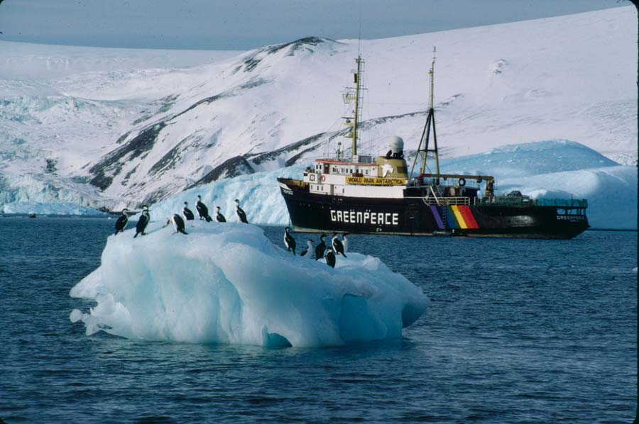 greenpeace research features