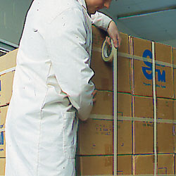 Reinforced plastic strapping tape