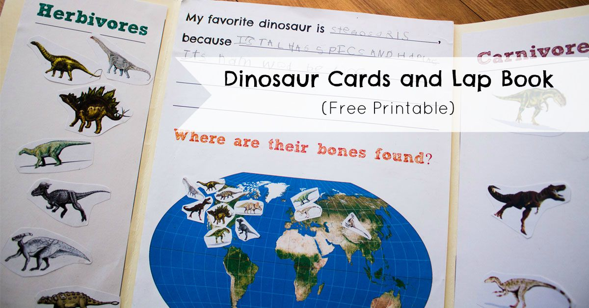 Dinosaur Cards And Lap Book