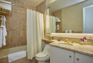 Fractional-new-york-bathroom