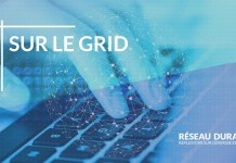 RD grid digitalisation