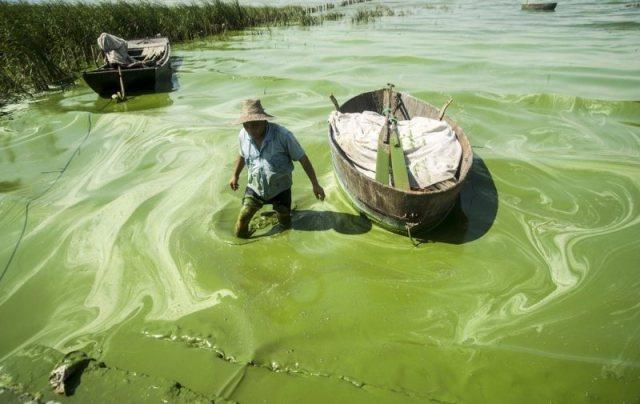 Un-pêcheur-embourbé-dans-le-slime-vert