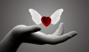 Le grand écart entre la froideur de la raison et la chaleur du cœur