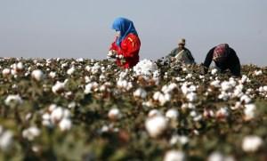 Comprendre la propagande anti-chinoise sur les Ouïghours