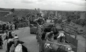 73 ans de deuil de sang et de larmes : Qui se souvient de la Nakba (journée marquant l'anniversaire de la création d'Israël) ?