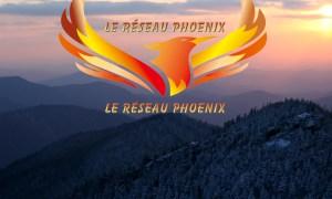 banniere phoenix