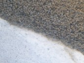 Suppression des bactéries de l'eau grâce à des petits éléments où la surface d'accroche est maximisée