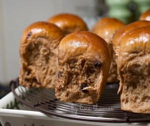resepi-chocolate-raisin-bun