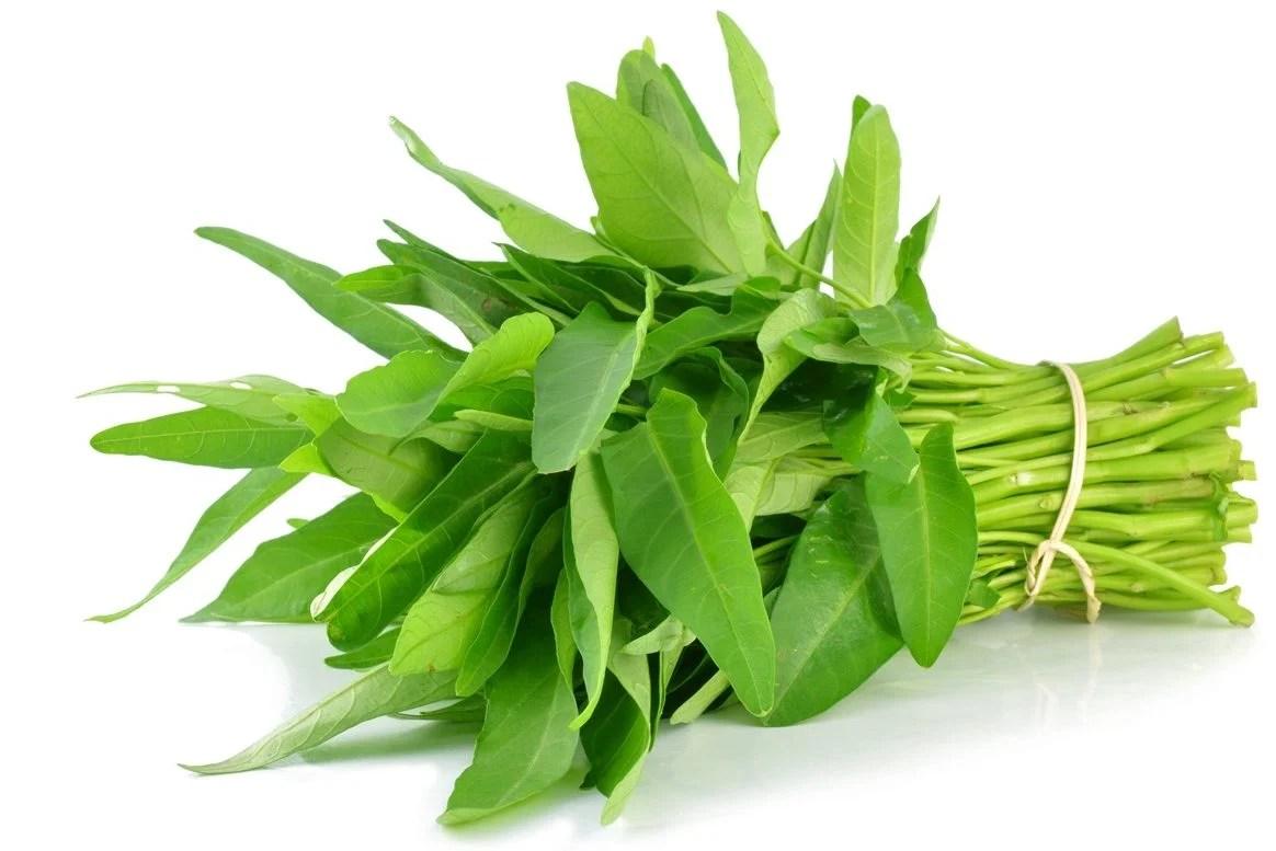 Hasil gambar untuk sayuran kangkung