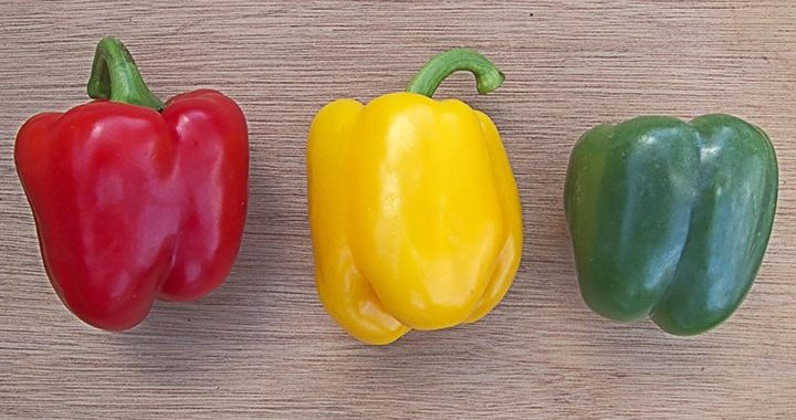 Ketahui Perbedaan Paprika Merah, Kuning, dan Hijau