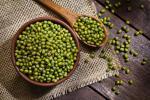 Manfaat Kacang Hijau pada Masakan dan bagi Kesehatan