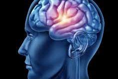nutrisi otak