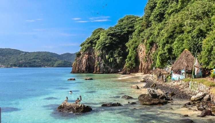 guayabitos isla del coral
