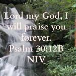 Psalm 30:12 B NIV