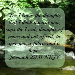 Jeremiah 29:11 NKJV