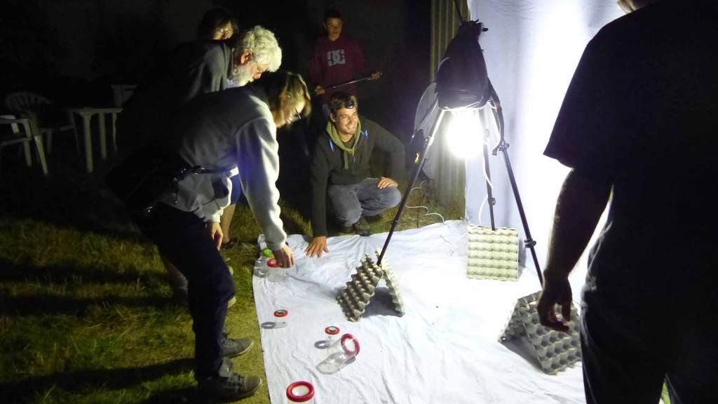 Animation papillon de nuit sur la Réserve du Marais de la Vacherie