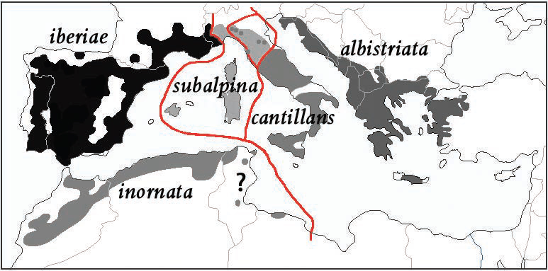 Map of the breeding ranges of all five taxa of the subalpine warbler complex.
