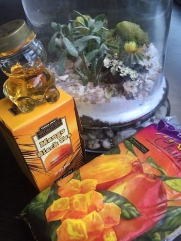 Little piece of paradise w/ a terrarium and MANGOS!
