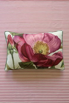 DC_VW_Vivienne's-Rose-Pink-Cushion_R