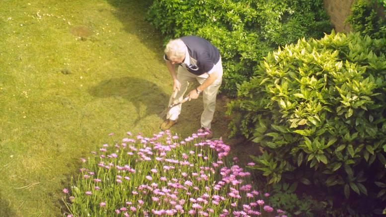 disconnect garden