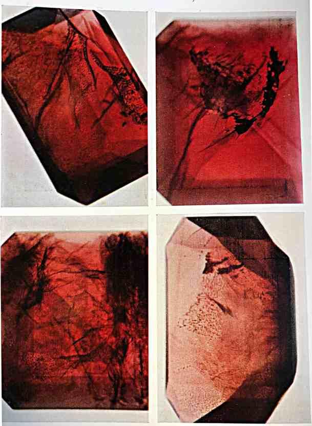 Rubino inclusioni tipo 2