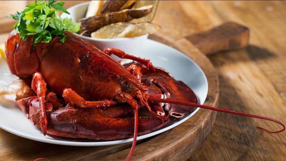 seafood-lobster-full