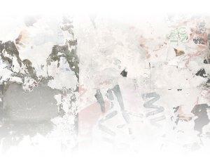 Decorative Blog Image