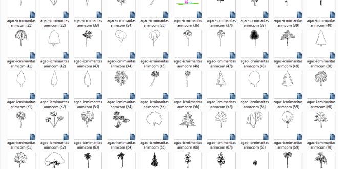 ağaç çizimleri