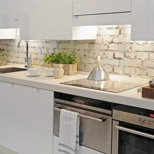 mutfak-tasarım-fikirleri (44)