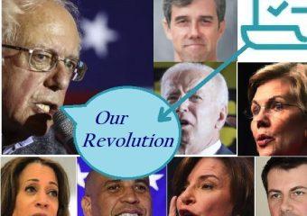 Democratic debate Bernie survey
