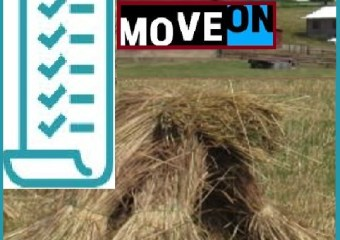 MoveOn straw poll results 2019