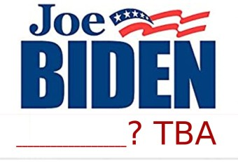 Help Biden decide on VP pick