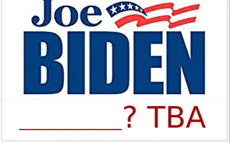 Help Biden decide on VP pick