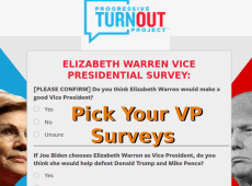 Biden's VP Pick Update and Surveys